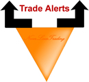 Option trade alerts review
