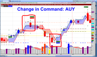 NLT Change in Command AUY